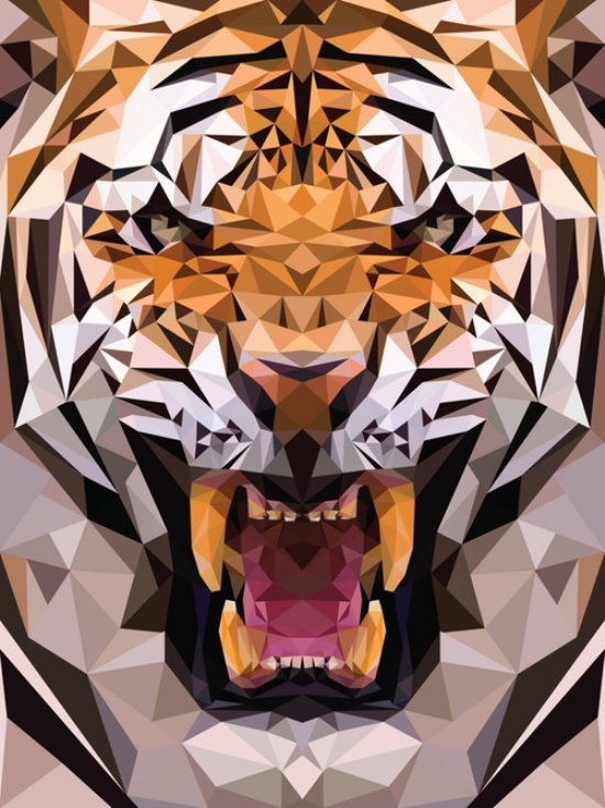 Geometric Animal Wallpaper The Art Mad Wallpapers 550x734