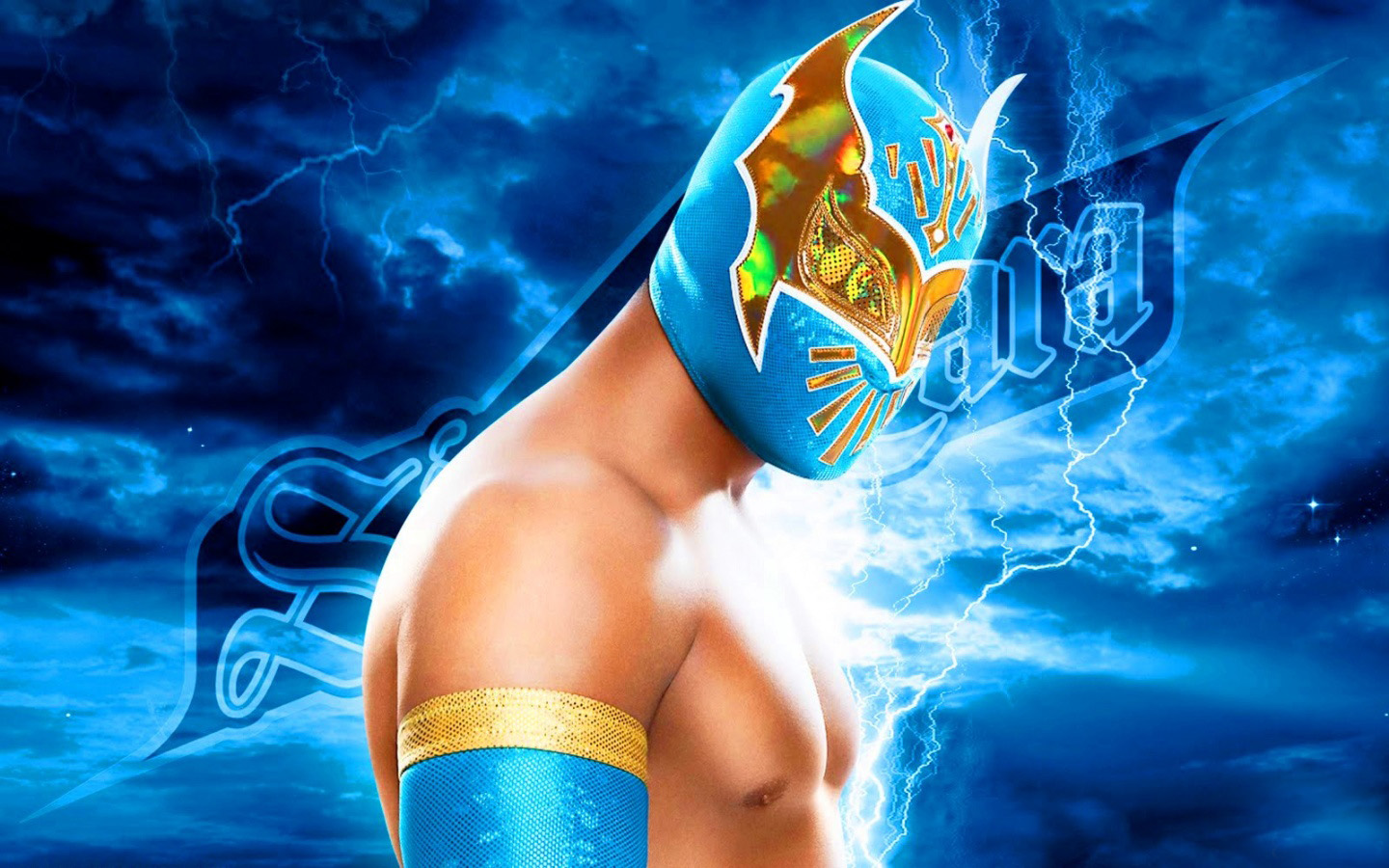 Sports Backgrounds In High Quality WWE by Haim Zafra October 8 2015 1440x900