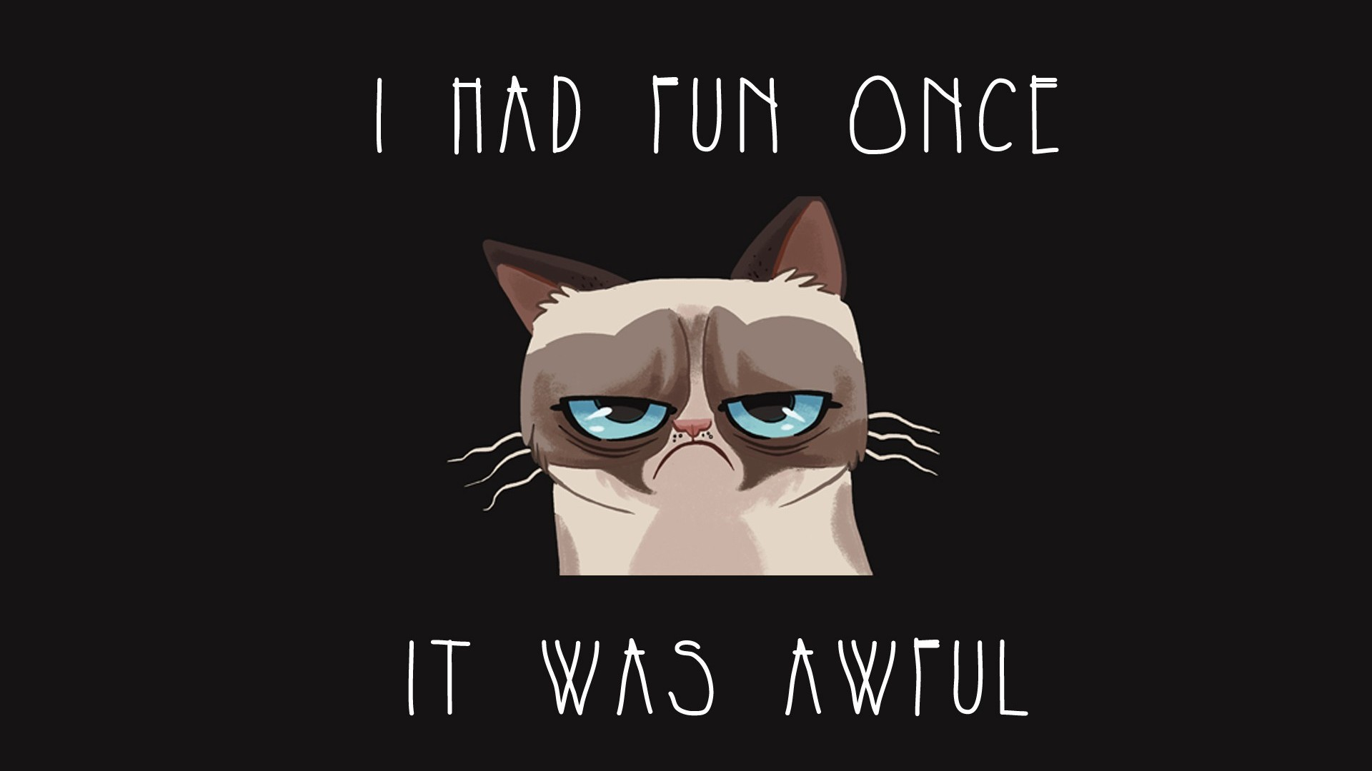 Grumpy cat Wallpaper 2442 1920x1080