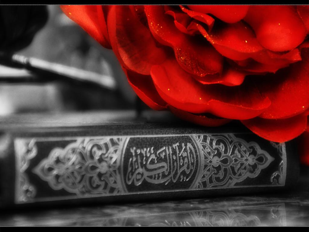49 Quran Wallpaper Hd On Wallpapersafari