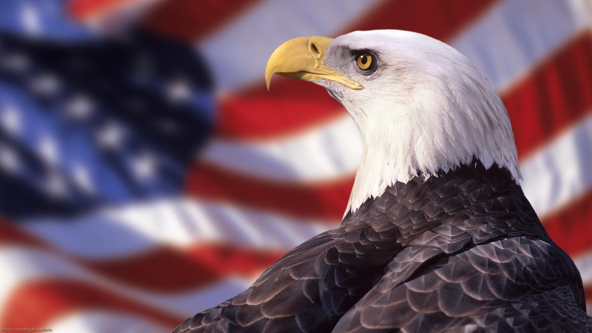 Patriotic Wallpaper Usa Flag Eagle: Patriotic Bald Eagle Wallpaper
