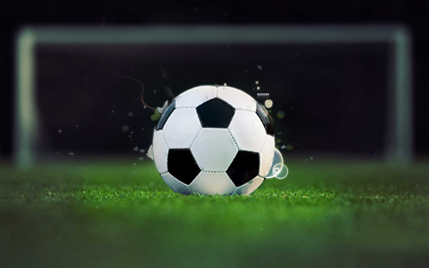 Wallpapers   Soccer Ball At Green Grass wallpaper 1440x900