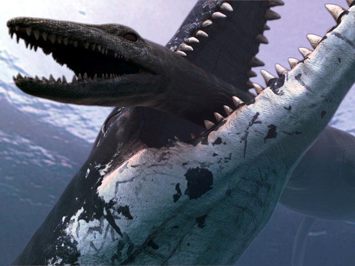 Wallpapers   HD Desktop Wallpapers Online Dinosaur Pictures 700x525