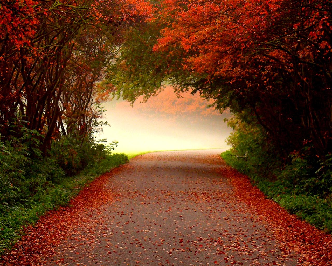 Autumn Desktop Wallpaper   HD Wallpapers 1280x1024
