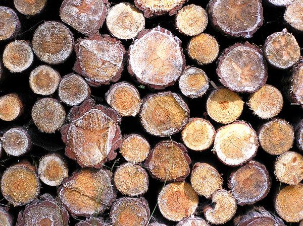 Wood texture stock photos   Rgbstock   stock images 600x449
