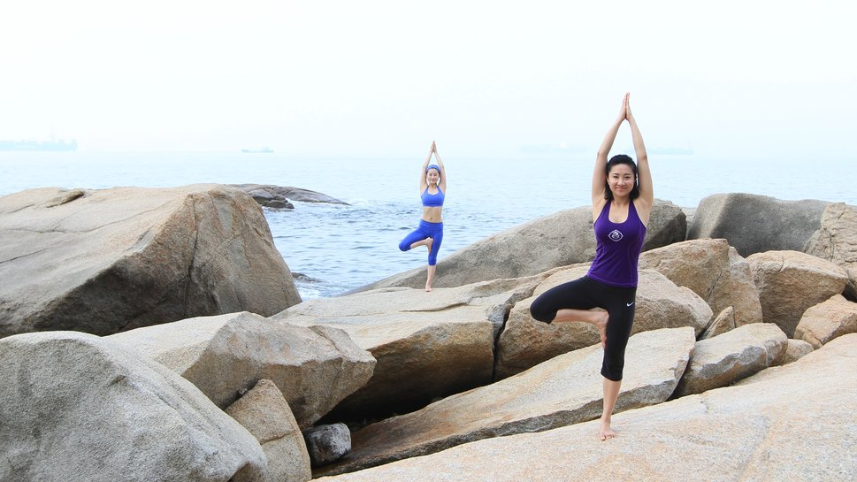 Duo Yoga Arbre Pose Wallpaper ForWallpapercom 969x545