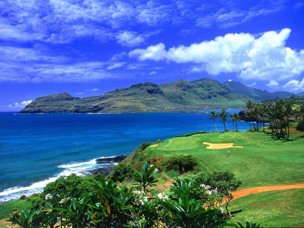 Golf Hawaii   Hawaii Wallpaper 23339685 1024x768