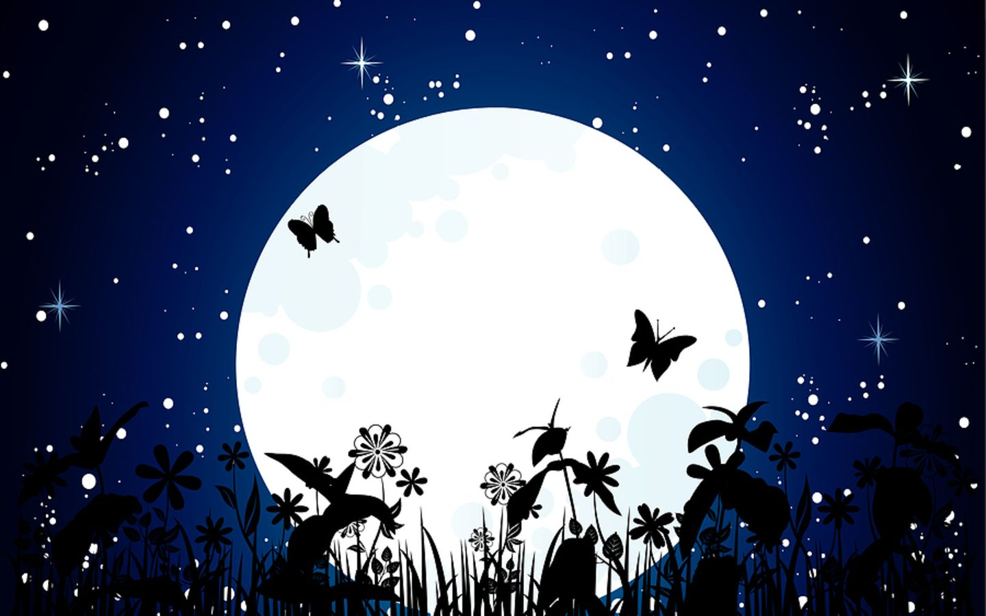 Beauty Moon And Butterfly HD Wallpaper Animation Wallpapers 1440x900
