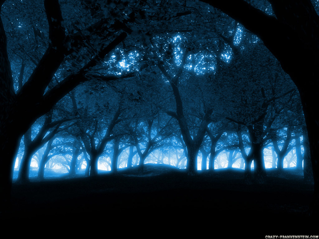 Blue forest wallpaper 520x245 Forest Wallpapers 1024x768