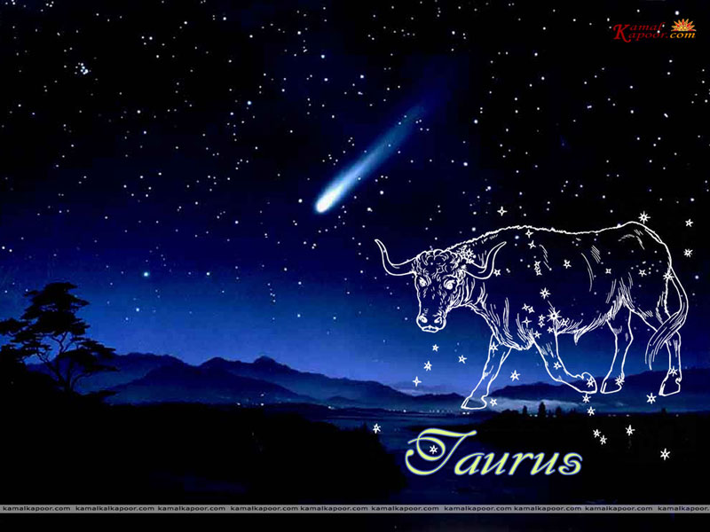 Taurus Desktop Wallpapers Zodiac Signs 800x600