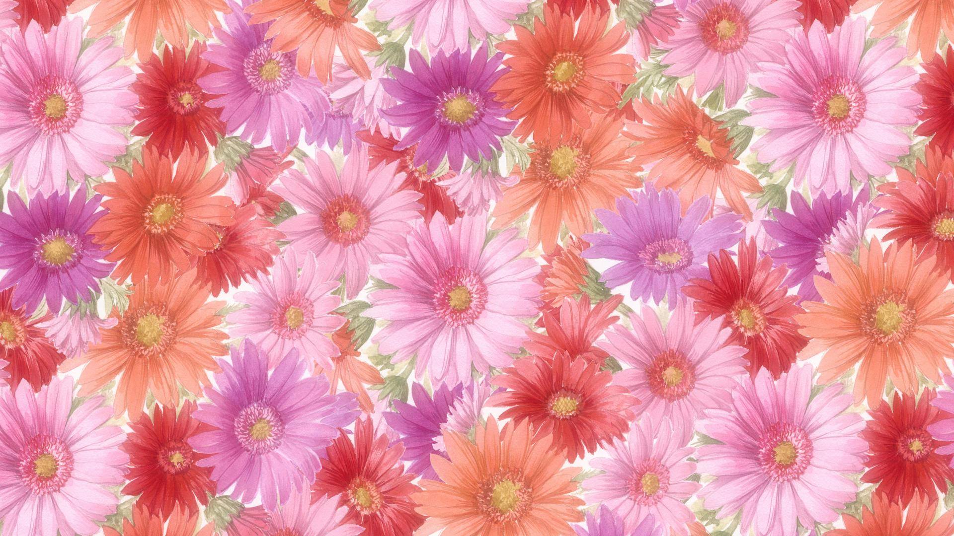 Flowers wallpapers high definition wallpapers high definition - Flowers Wallpaper 155 Free Wallpapers Free Desktop Wallpapers Hd