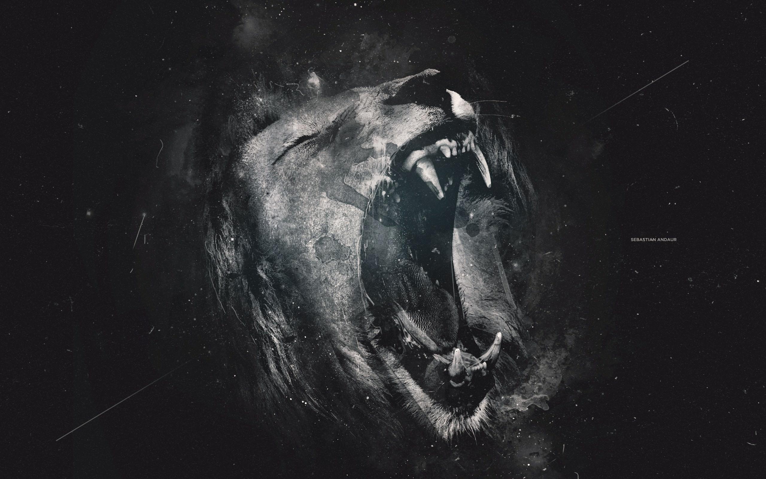 Dark Lion Wallpaper Desktop Wallpaper Desktop Hd