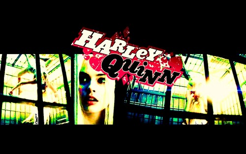 Harley Quinn 500x313