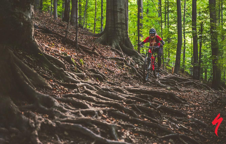 Wallpaper forest girl nature bike roots sport track helmet 1332x850