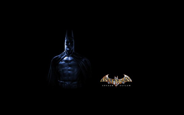 Batman Arkham Asylum Wallpaper 600x375