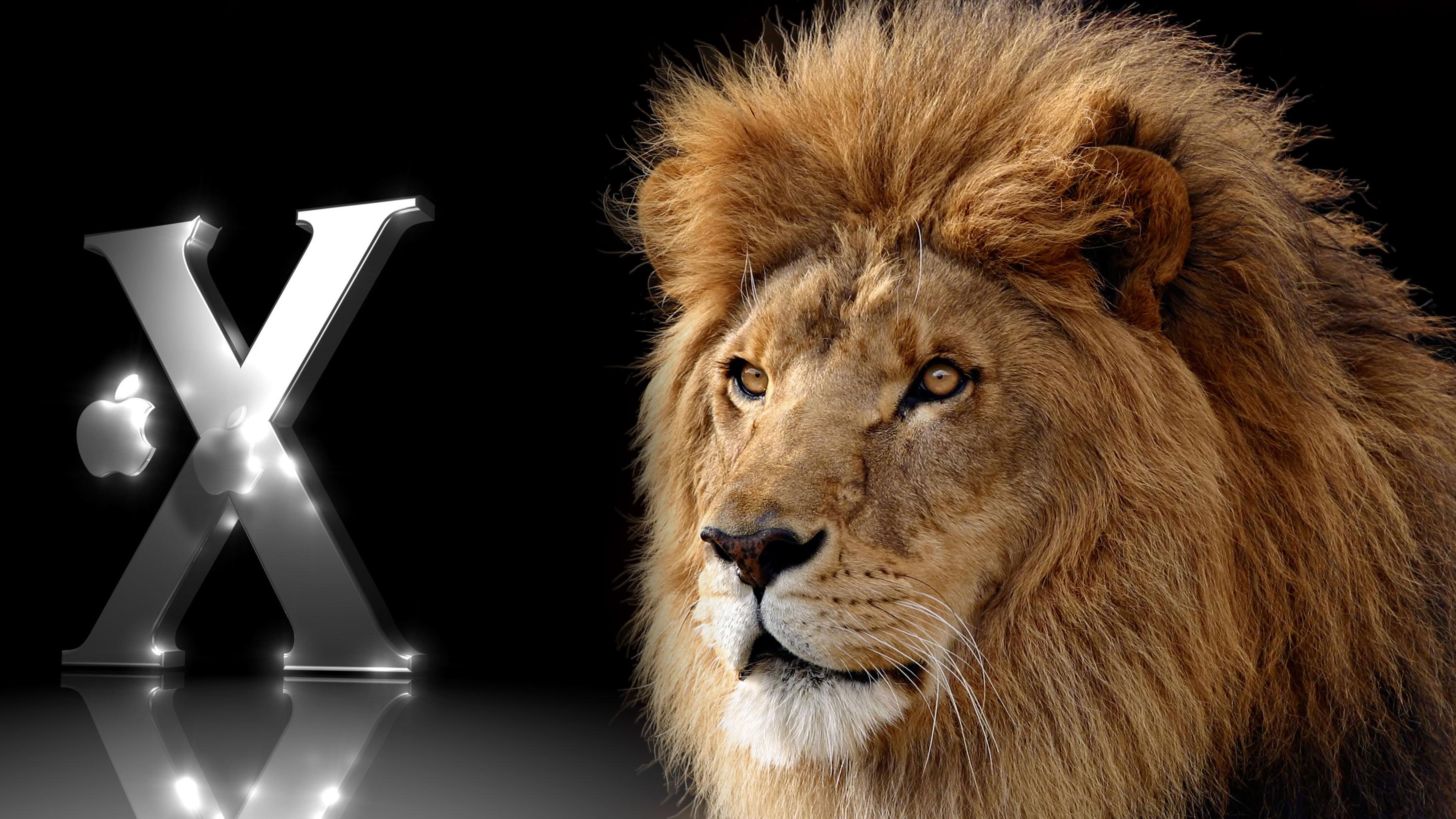 Fonds dcran Mac Os X Lion tous les wallpapers Mac Os X Lion 3641x2048