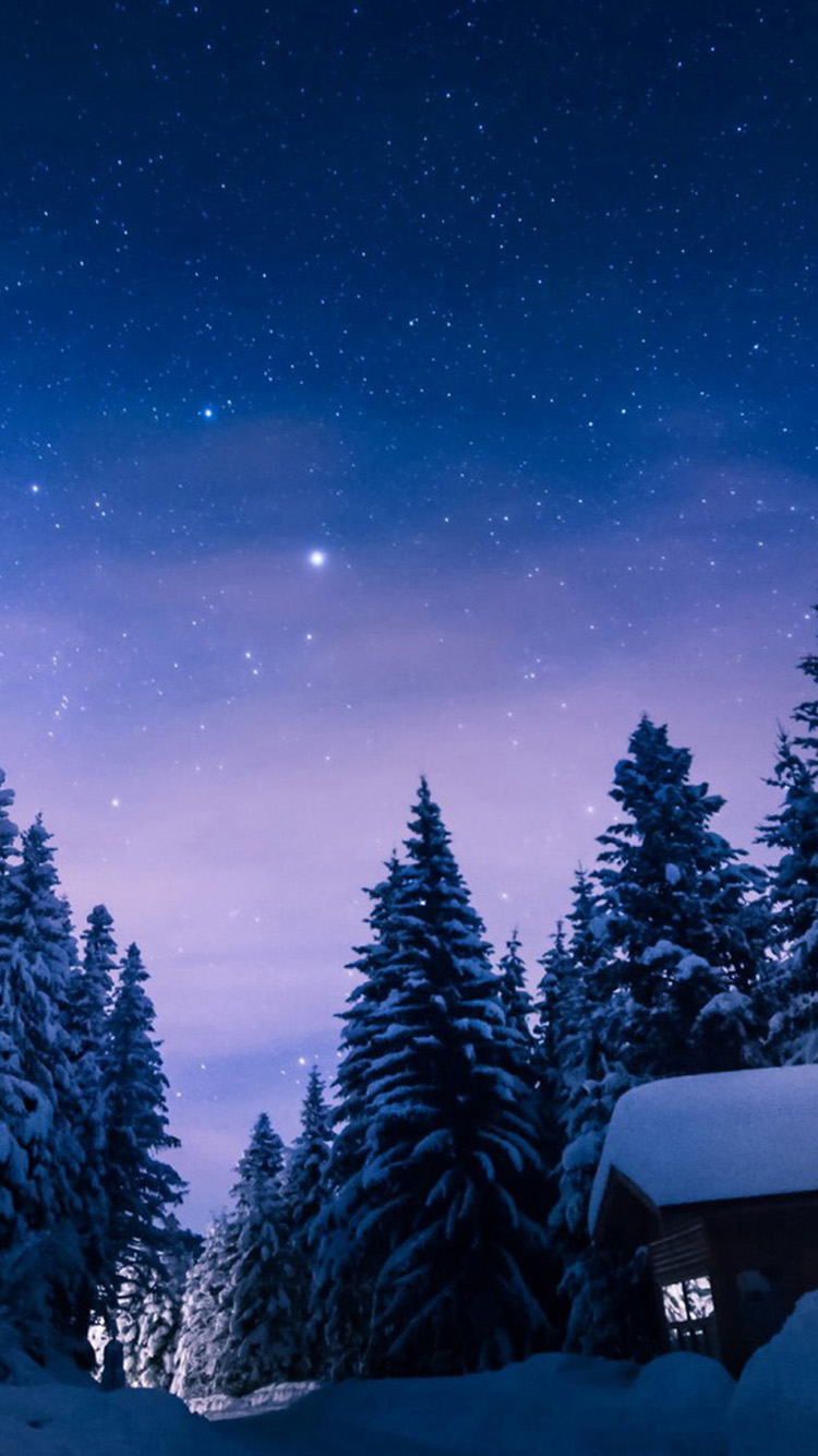 Winter Wallpaper for iPhone  WallpaperSafari