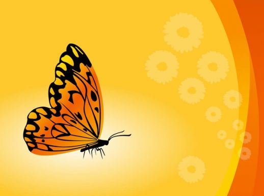 Butterfly Background Vector   AI PDF   Graphics download 518x386