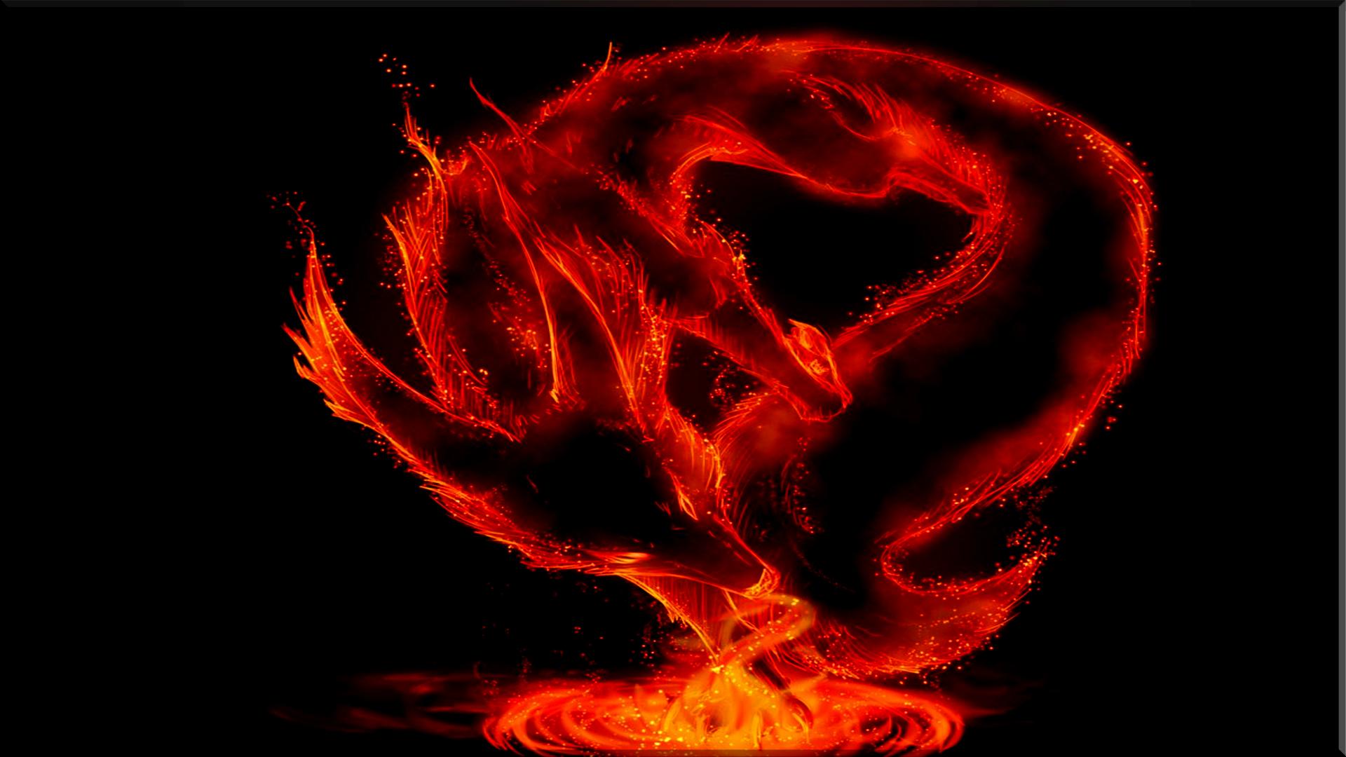 Fire Dragons Computer Wallpapers Desktop Backgrounds 1920x1080 ID 1920x1080