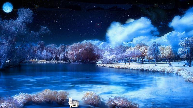 blue Starry Winter Night Abstract 3D and CG HD Desktop Wallpaper 800x449