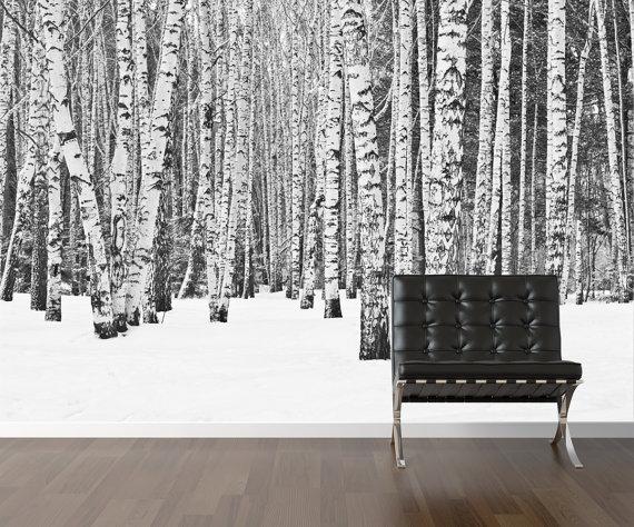 Birch tree wallpaper repositionable peel stick wall paper wall 570x474