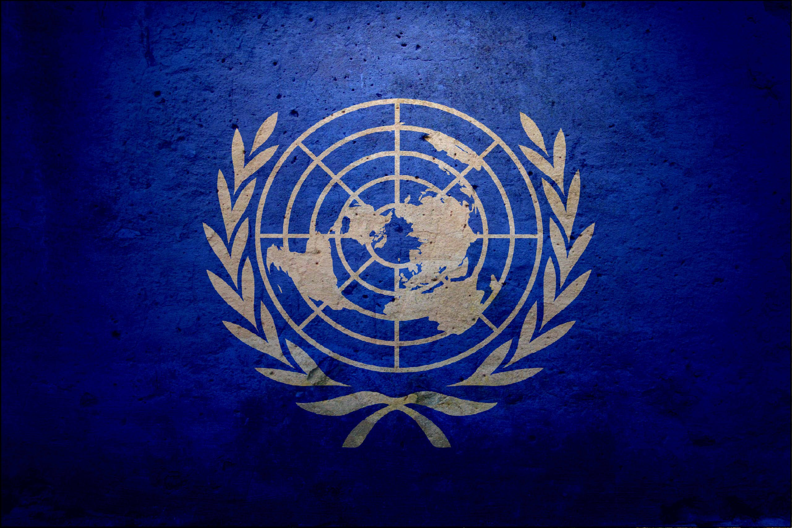 Flag Of The United Nations HD Wallpaper Background Image 2560x1707