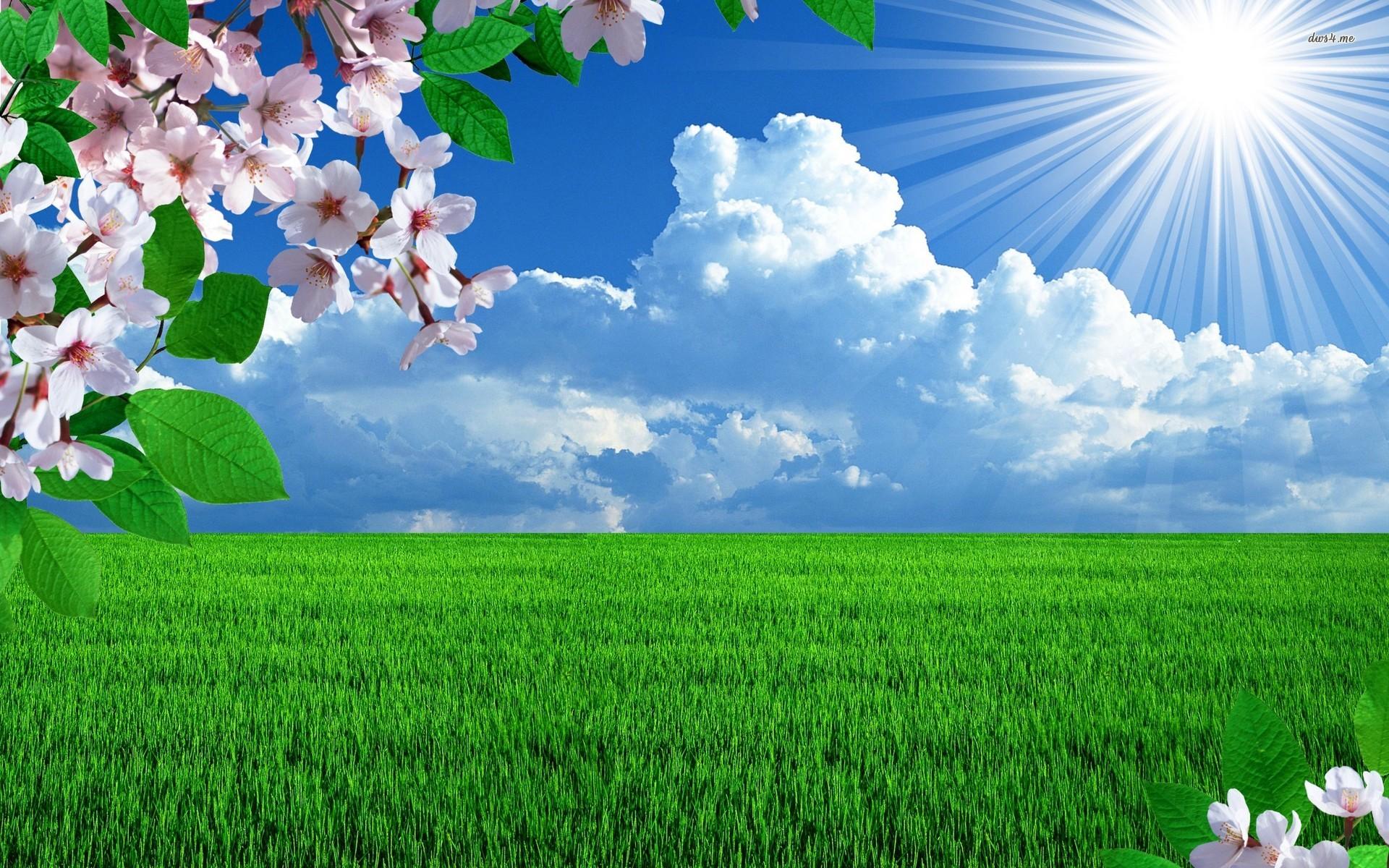 Beautiful Sunny Day Wallpaper 1920x1200 PZ5XOQ7   Picseriocom 1920x1200