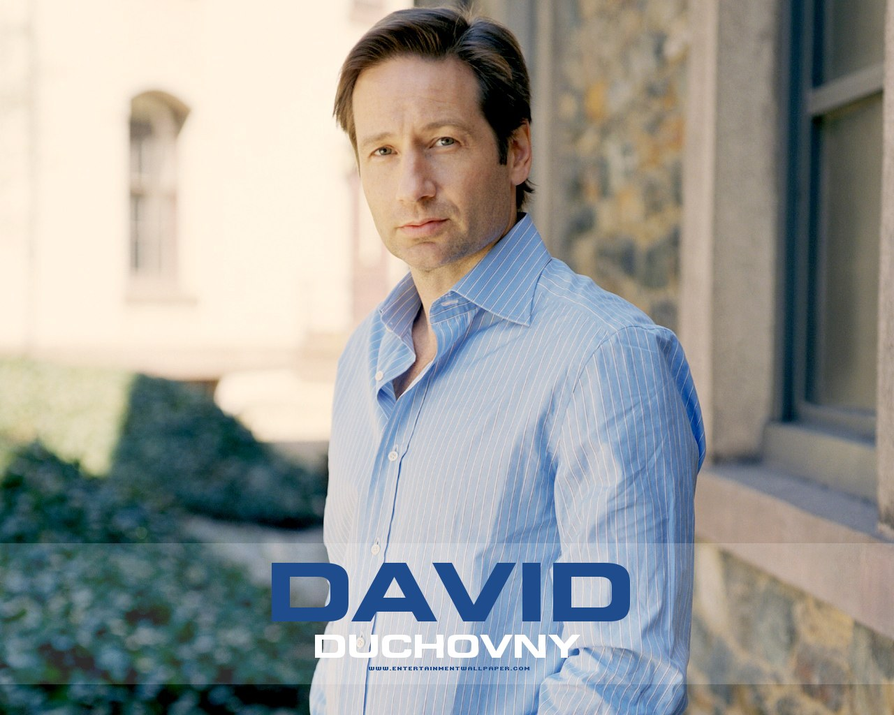 David Duchovny Wallpaper 15   1280 X 1024 stmednet 1280x1024