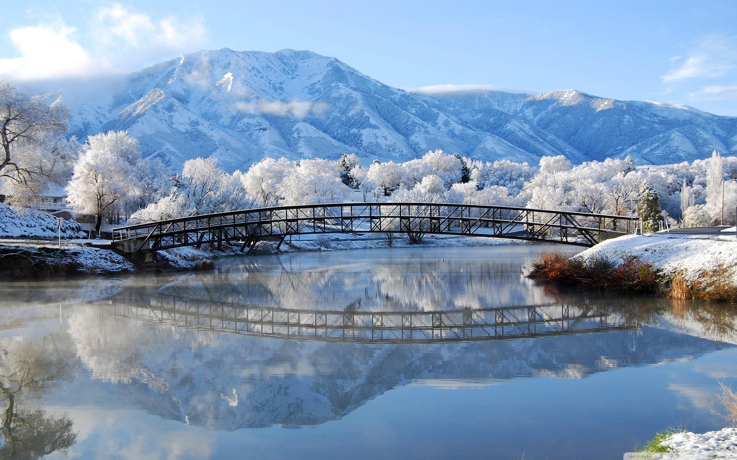 Beautiful Winter Scene 4K HD Desktop Wallpaper for 4K Ultra HD 2560x1600