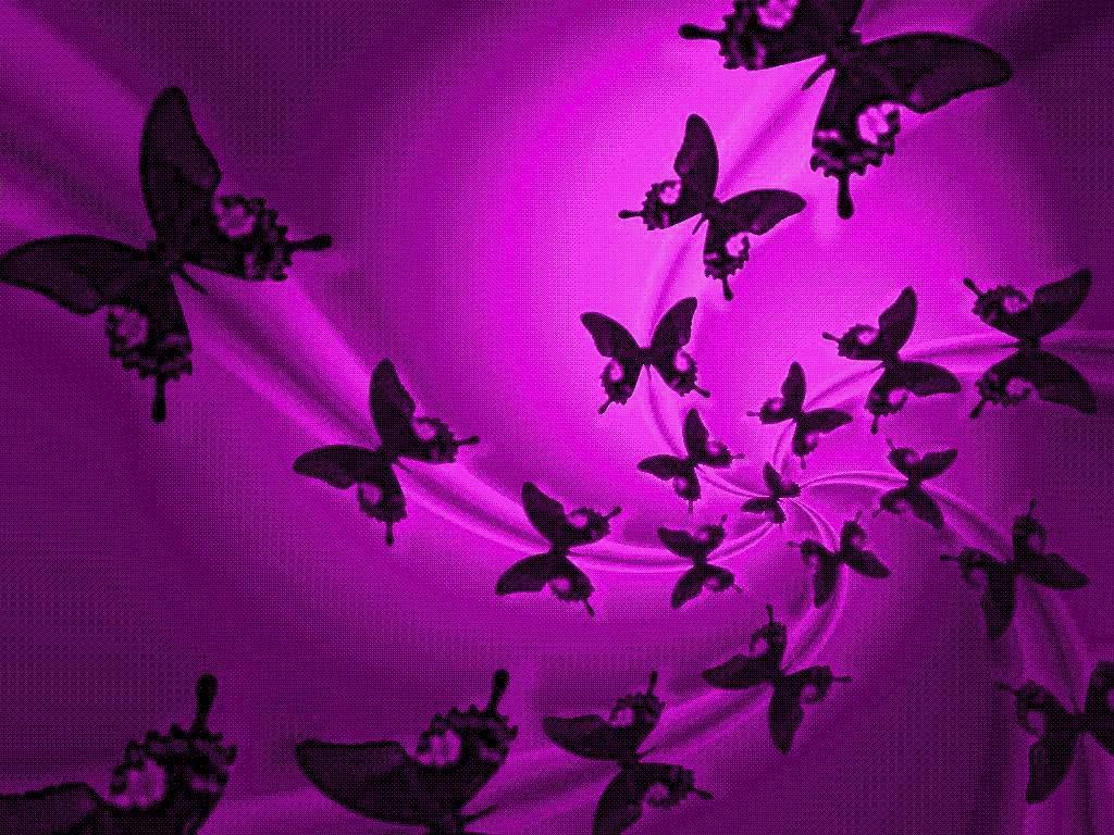 Free Download Purple Butterfly Backgrounds Hd Wallpaper Background