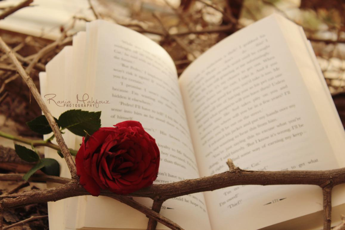 Beautiful reading   88579   High Quality and Resolution Wallpapers 1157x772