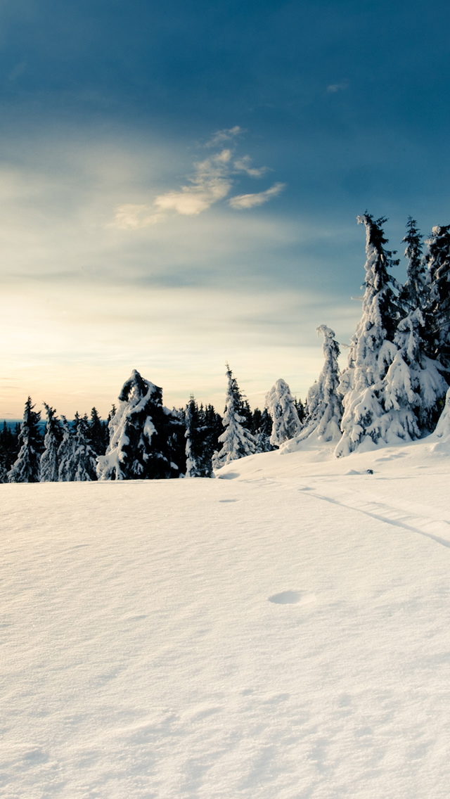 Iphone 4 Wallpaper Snow