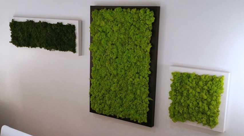 MossArt Wall in Surrey BC 4jpg 853x475