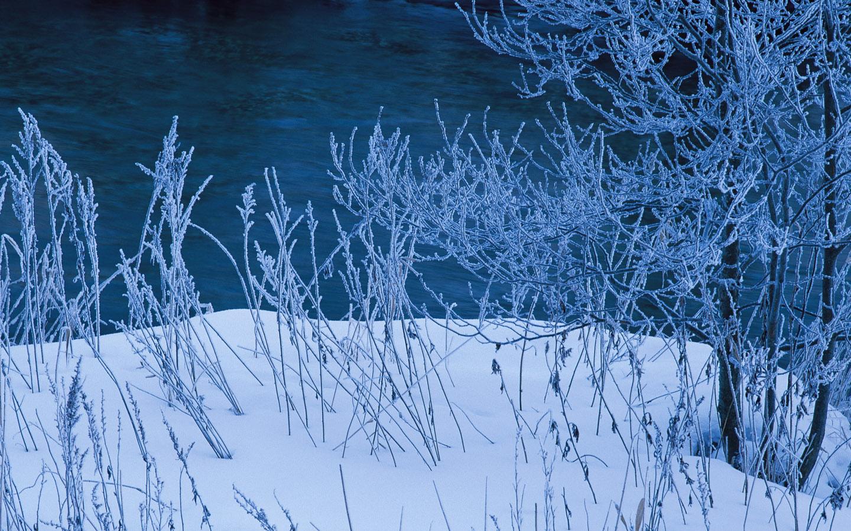 Winter Snow Photos   Snow Scenes Wallpapers 1440900 NO43 Wallpaper 1440x900