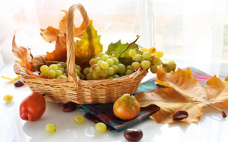HD Basket Of Autumn Wallpaper Download   61496 800x500
