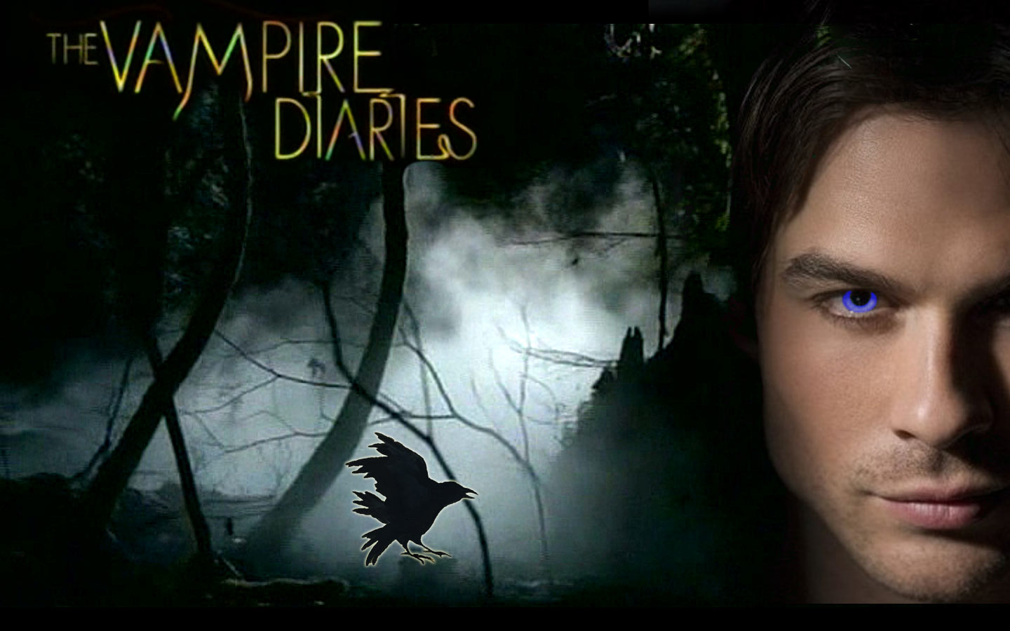 Beautiful Little Losers images Damon   The Vampire Diaries 1440x900