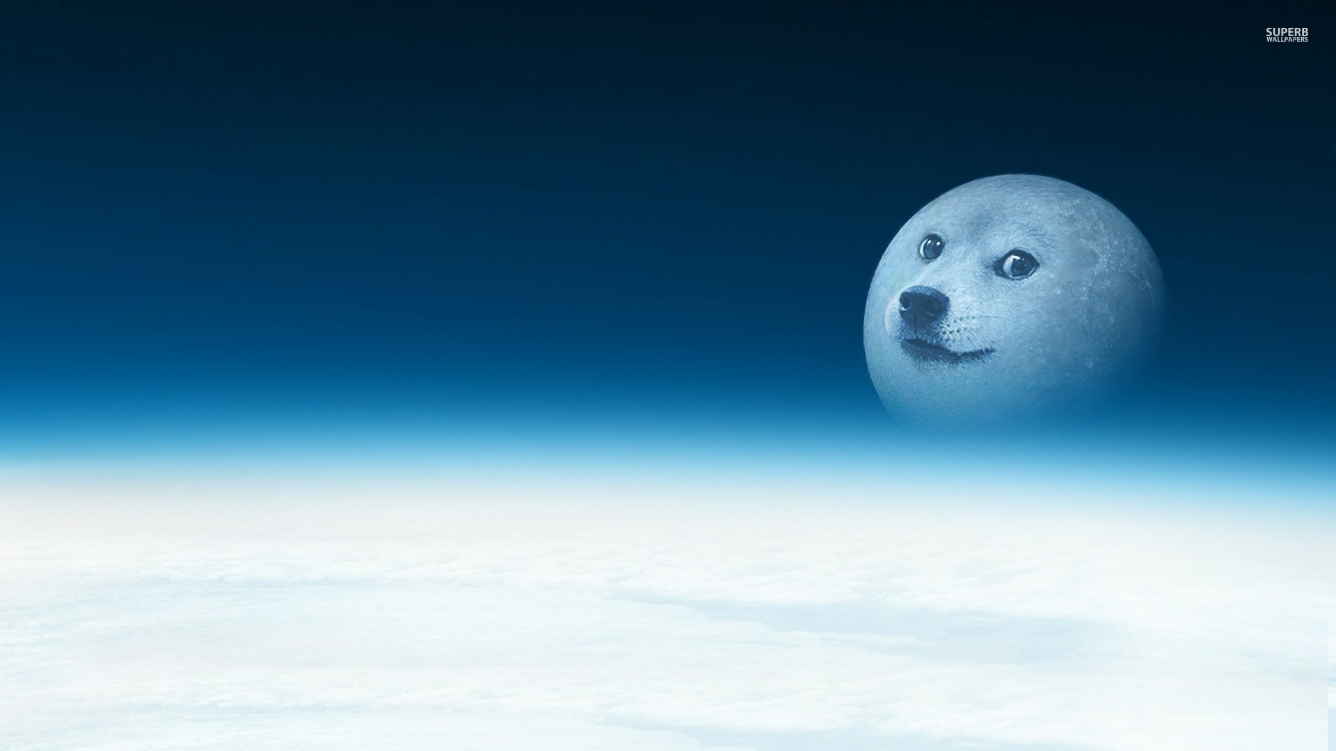 doge   Doge Wallpaper 1920x1080 100012 1920x1080