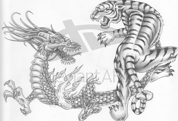 dragon vs tiger wallpaper image search results 600x407
