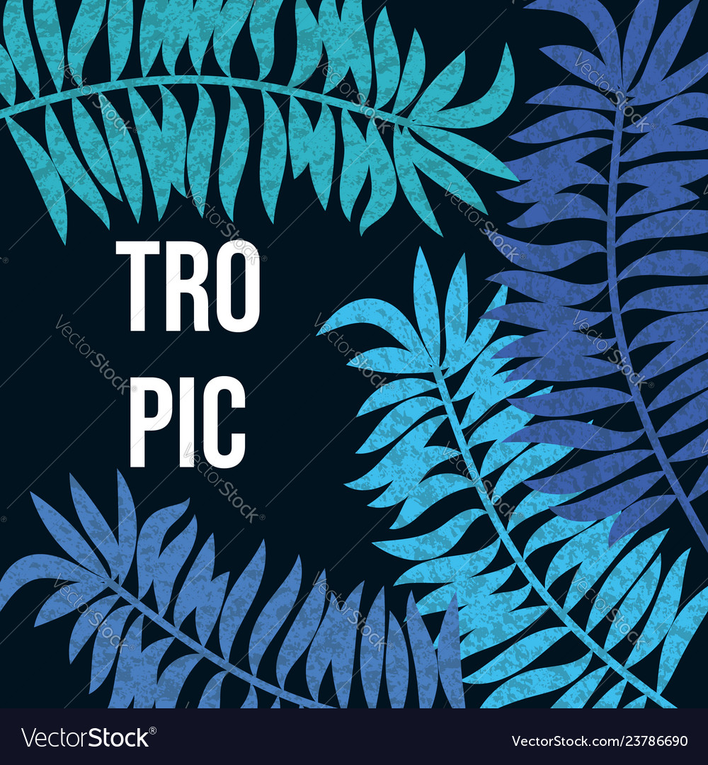 Summer night tropic background with palm leaves Vector Image 1000x1080