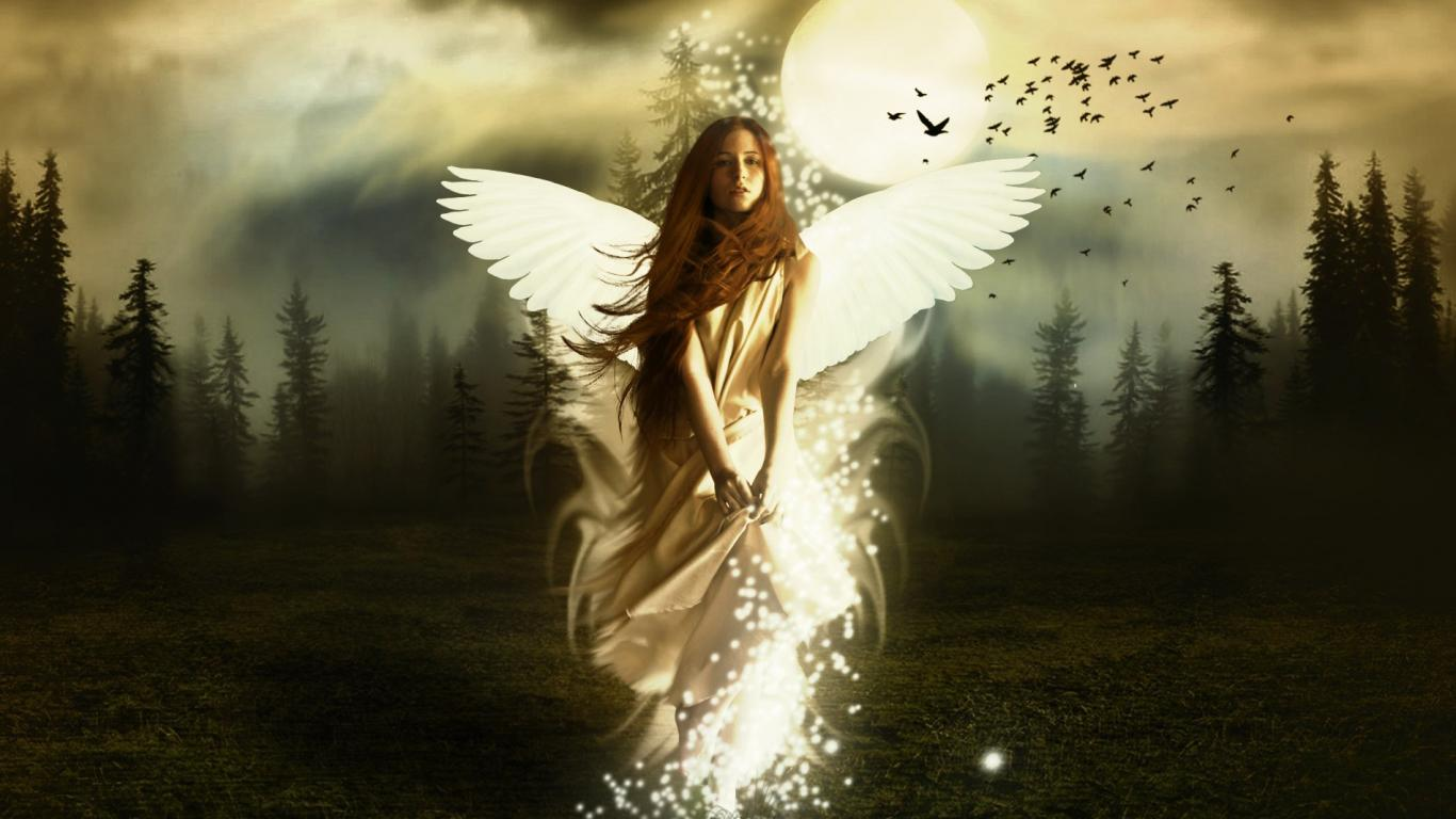 short story titled In the Forest of Angels The story 1366x768