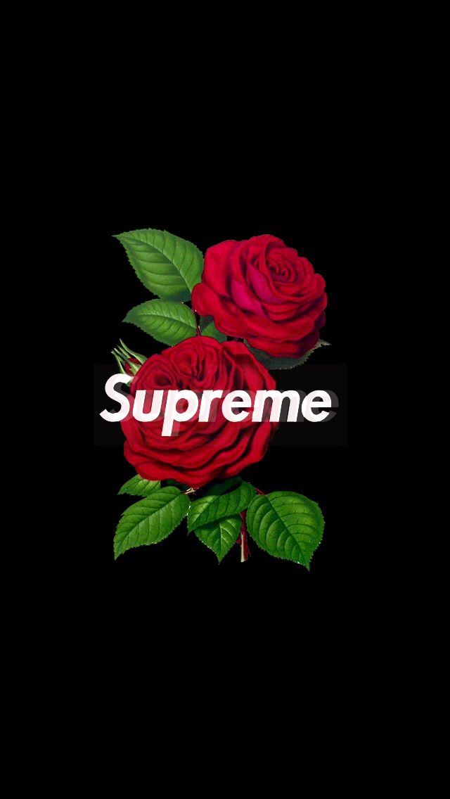 supreme rose wallpaper iphone 640x1136