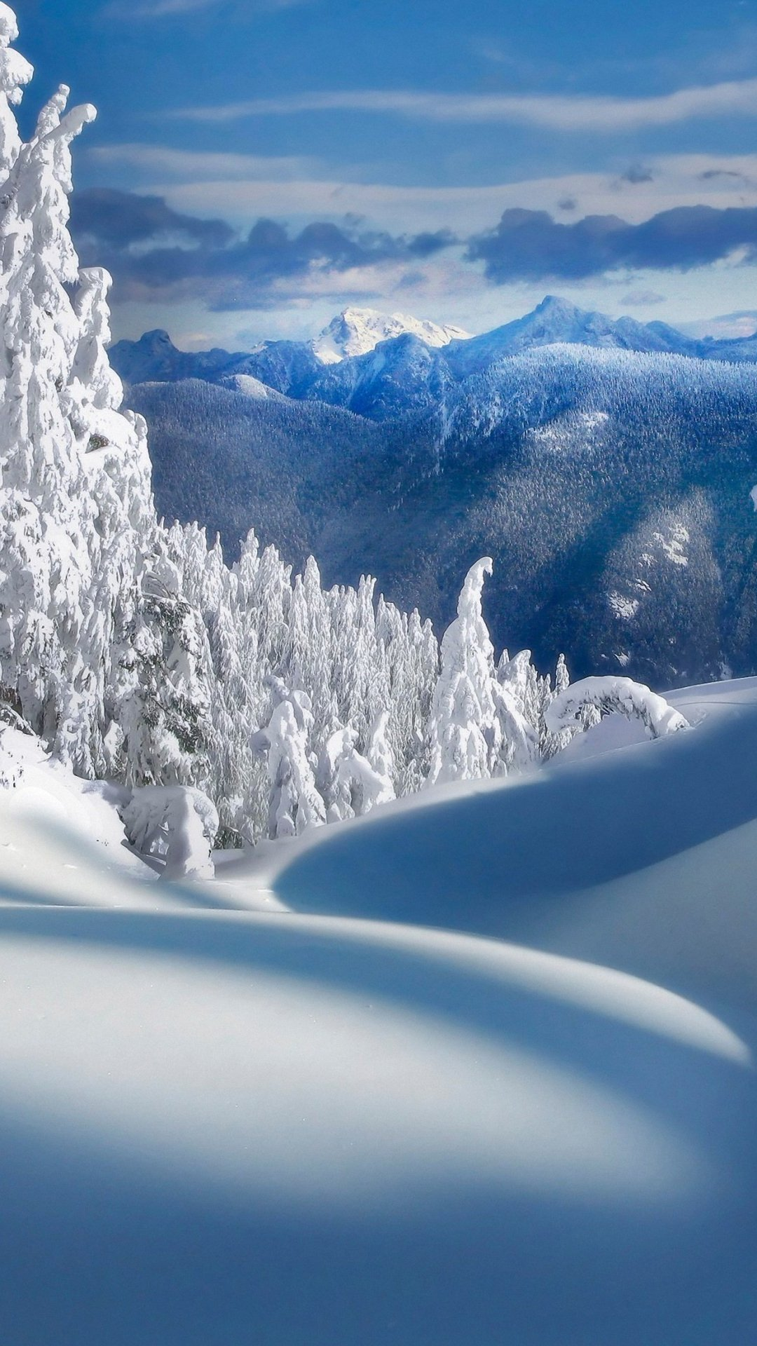 Download Winter Wallpapers for Iphone 1080x1920