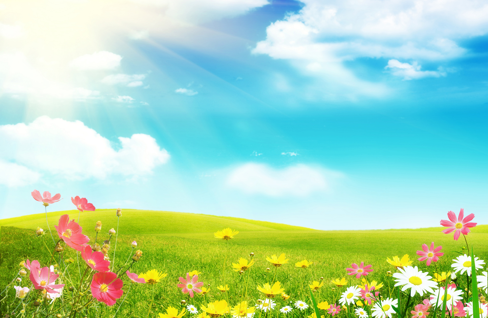 Spring 2 Wallpapers Desktop Wallpapers HD Wallpapers 1920x1252