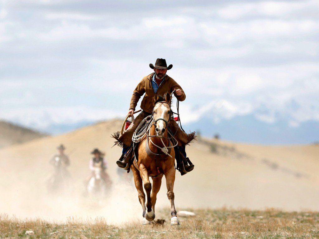 50 Horse Riding Wallpapers   Download at WallpaperBro 1024x768