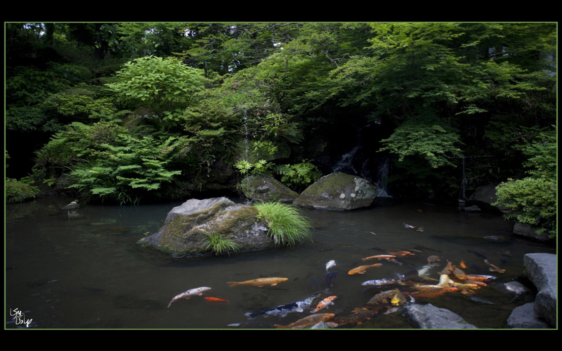 hdwpaperscombeautiful japanese garden wallpaper wallpapershtml 1920x1200