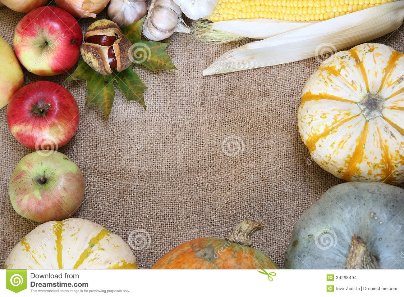 Pin Frames Borders Vegetables Wallpapers Ajilbabcom Portal on 1300x957