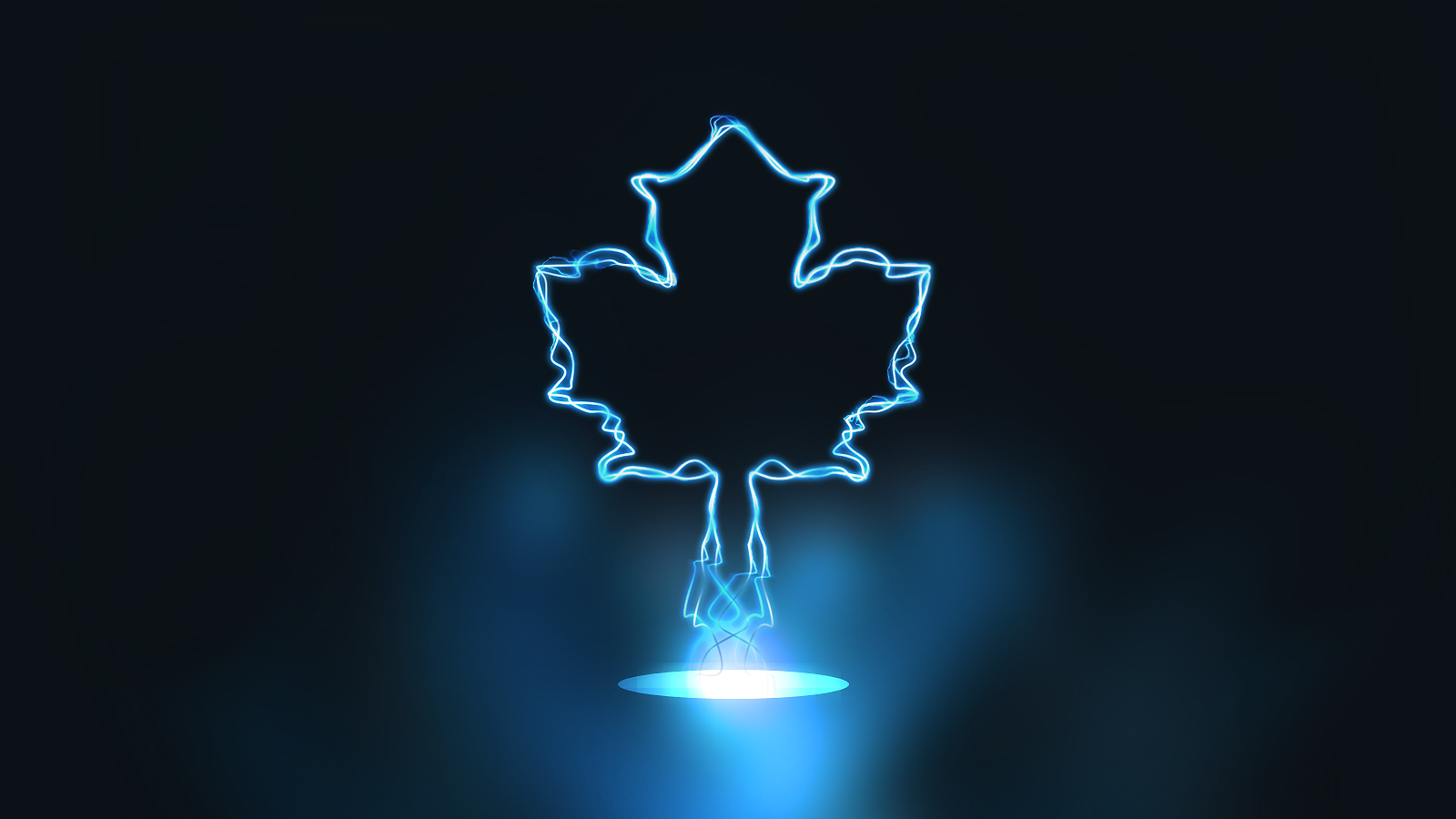 Toronto Maple Leafs wallpapers Toronto Maple Leafs background 1600x900