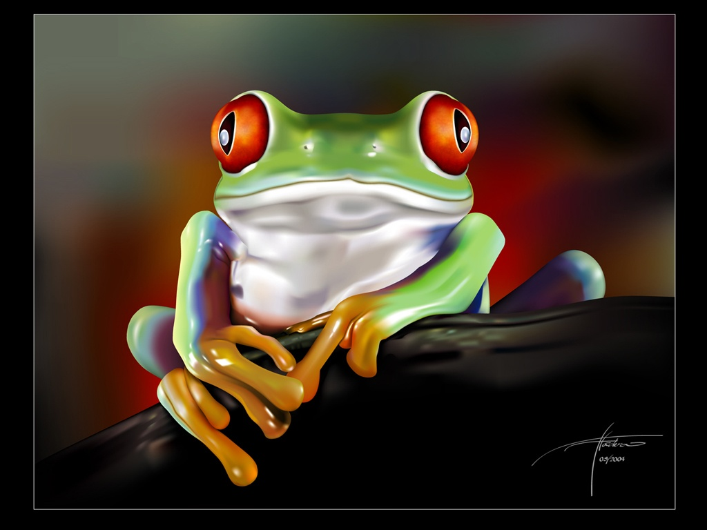 Cute Little Frogs In Photos Funny And Cute Animals 1024x768