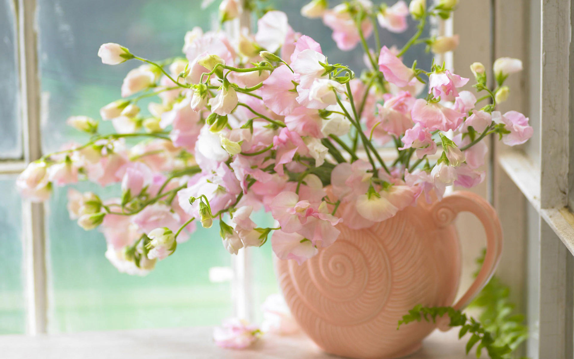 Pink flowers in a vase Widescreen Wallpaper - #1773