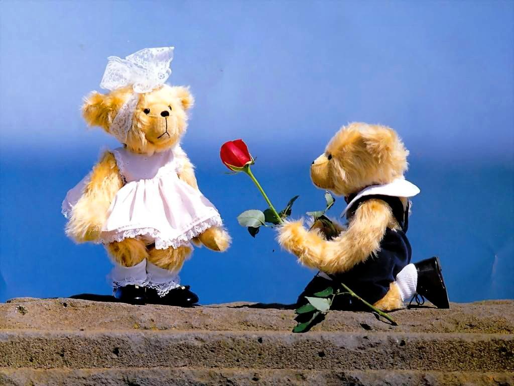 Free Download Love Teddy Bear Wallpaper Teddy Bear The